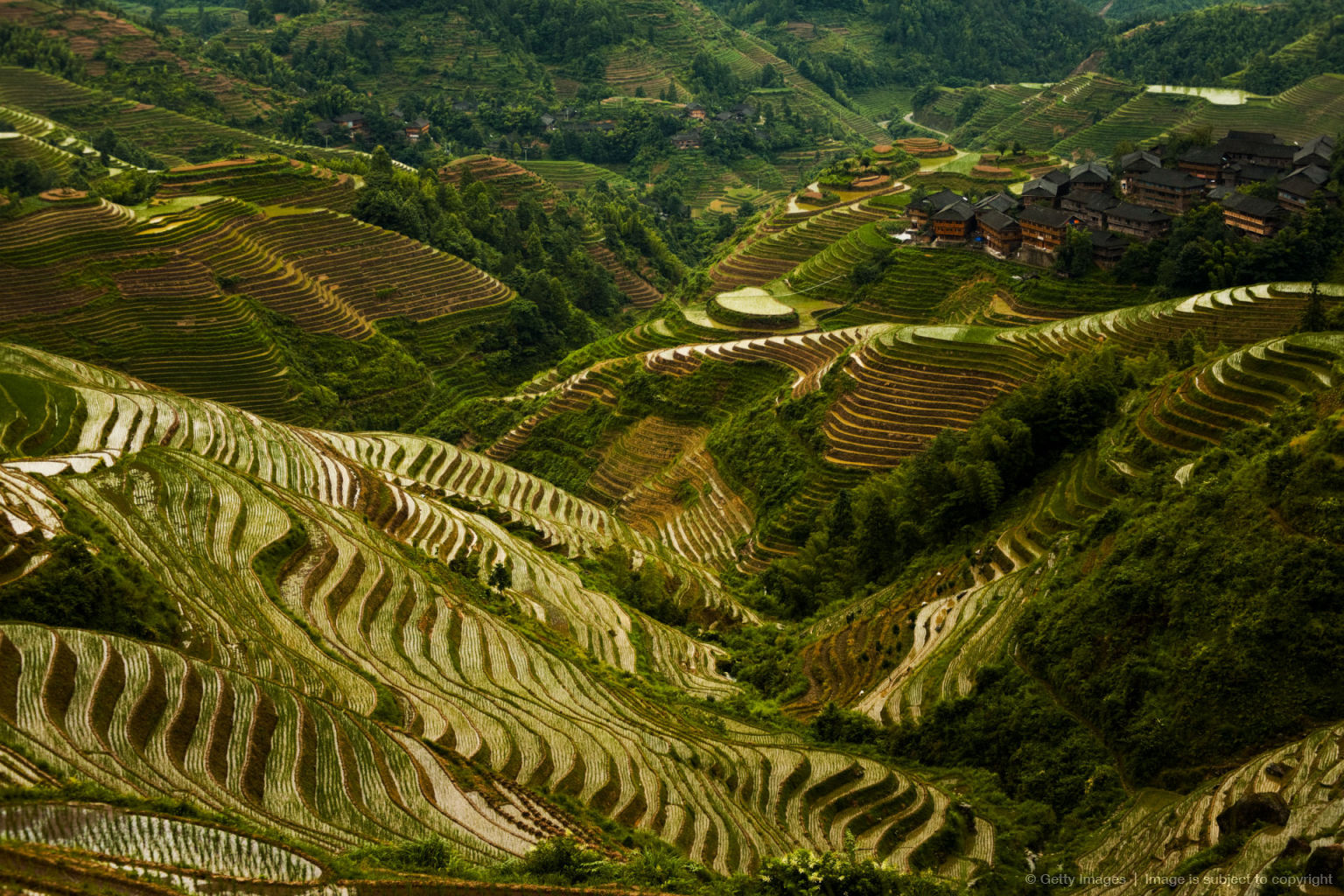 Steep Rice Terrace Mountain Longji Overcast