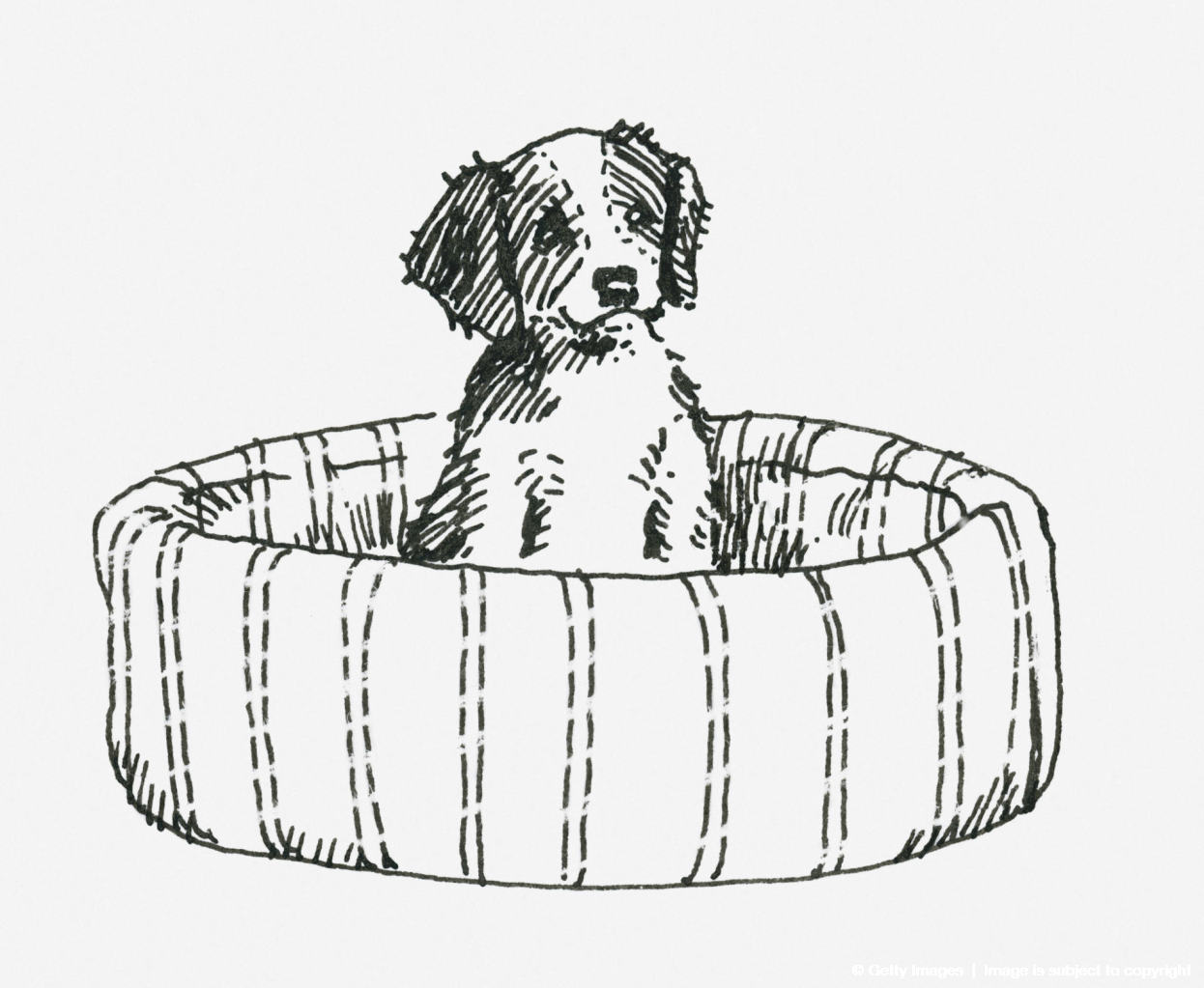 Black and white illustration of a puppy sitting up in a dog bed