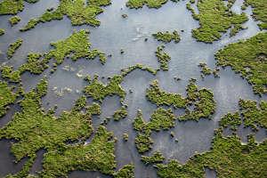 BP Gulf spill